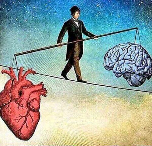Take your brain with your heart