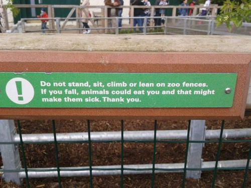 Do not stand,sit,climb,or lean on zoo fences.If you fall, animals could eat you and that might make them sick.Thank you.