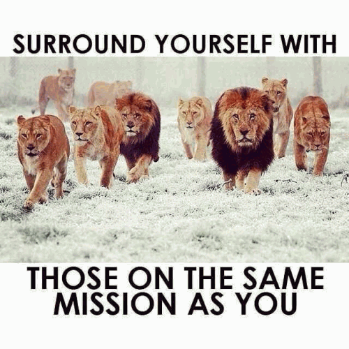 Surround yourself with those on the same mission with you.