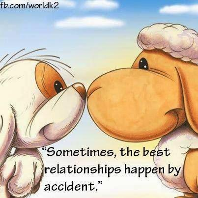 Sometimes, the best relationships happen by accident.