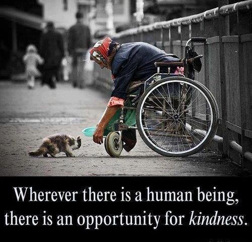 Wherever there is a human being, there is an opportunity for kindness.