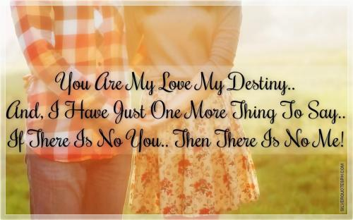 You are my love my destiny, and I have just one more thing to say, if there is no you, then there is no me.