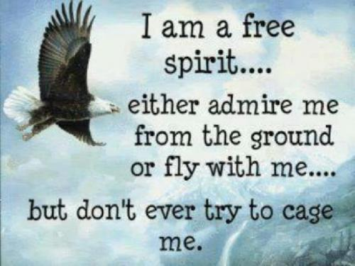 I am a free spirit.... either admire me from the ground or fly with me.... but don't every try to cage me.