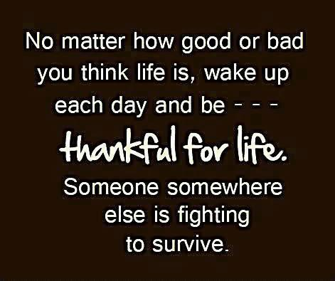 No matter how good or bad you think life is, wake up each day and be-- thankful for life. Someone somewhere else is fighting to survive.
