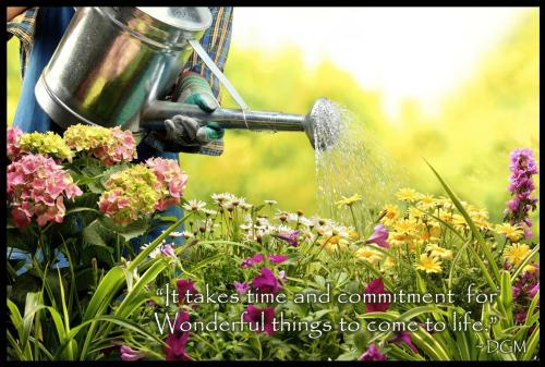 It takes time and commitment for Wonderful things to come to life.
