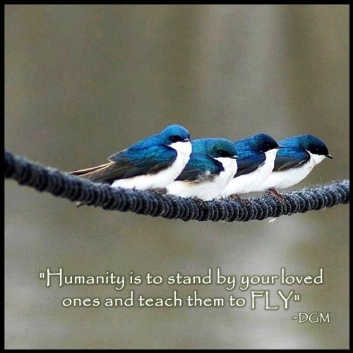 Humanity is to stand by your loved ones and teach them to FLY.