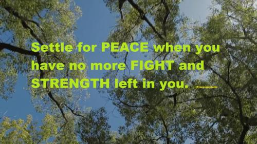 Settle for PEACE when you 