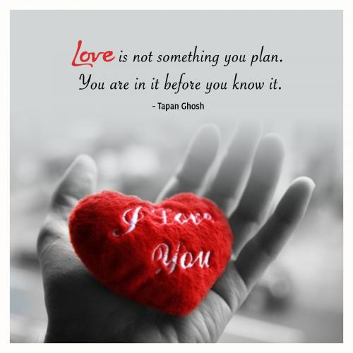 Love is not something you plan. You are in it before you know it.