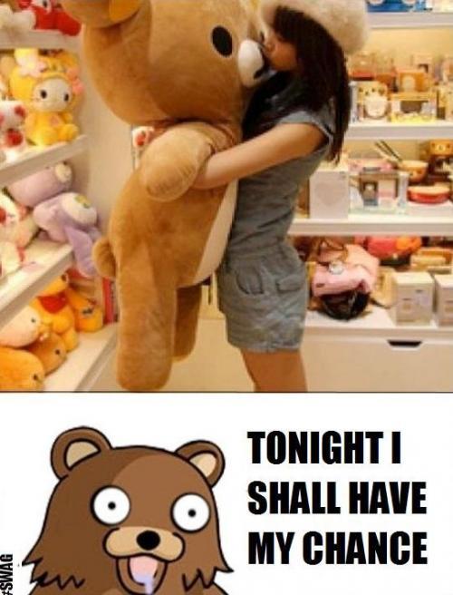 bears o_O omg!!