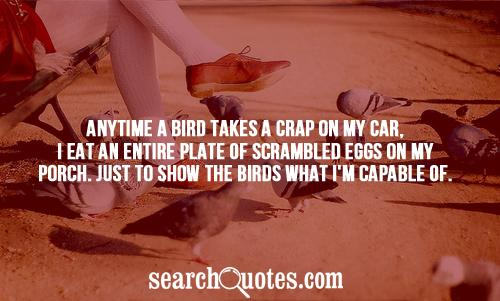 Anytime a bird takes a crap on my car, I eat an entire plate of scrambled eggs on my porch. Just to show the birds what I'm capable of.