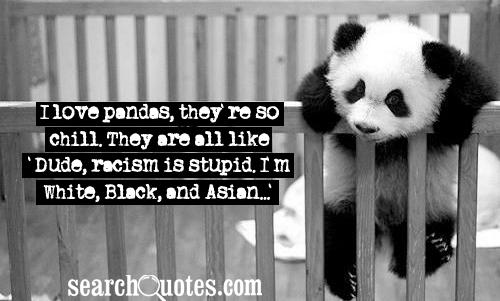 I love pandas, they're so chill. They are all like 'Dude, racism is stupid. I'm White, Black, and Asian...'