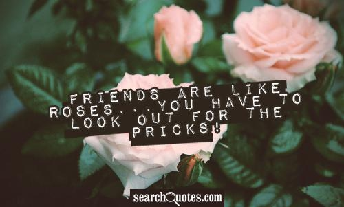 Friends are like roses...you have to look out for the pricks!
