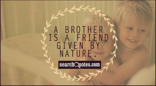 Brother And Sister Love Quotes Impressive Brother Sister Quotes  Quotes About Brother Sister  Sayings