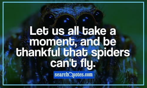 Let us all take a moment, and be thankful that spiders can't fly.