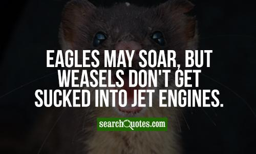 Eagles may soar, but weasels don't get sucked into jet engines.