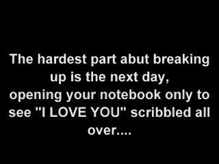 sushan insaneinsomniac breakup quotes