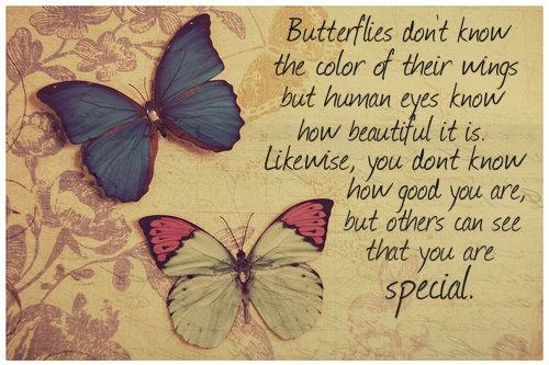 Butterflies don't know the color of their wings, but human eyes know how beautiful it is. Likewise, you don't know how good you are, but others can see that you are special.