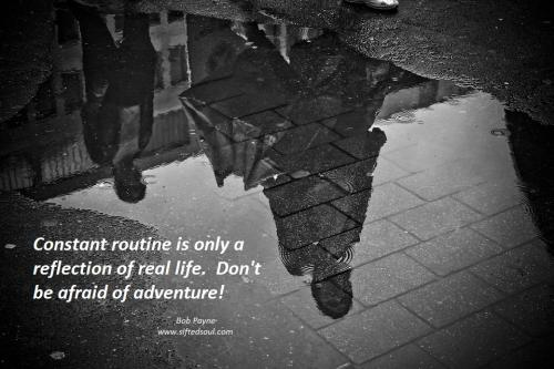 Constant routine is only a reflection of real life.  Don't be afraid of adventure!