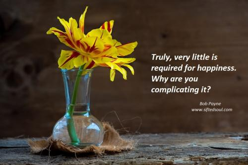 Truly, very little is required for happiness.  Why do you keep complicating it?