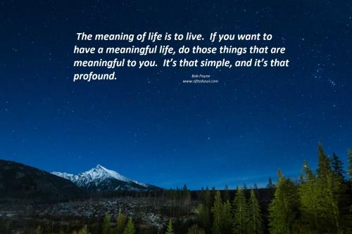 The meaning of life is to live.  If you want to have a meaningful life, do those things that are meaningful to you.  It's that simple, and it's that profound.