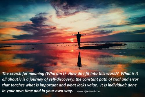 The search for meaning (Who am I?  How do I fit into this world?  What is it all about?) is a journey of self-discovery, the constant path of trial and error that teaches what is important and what lacks value.  It is individual; done in your own time and in your own way.