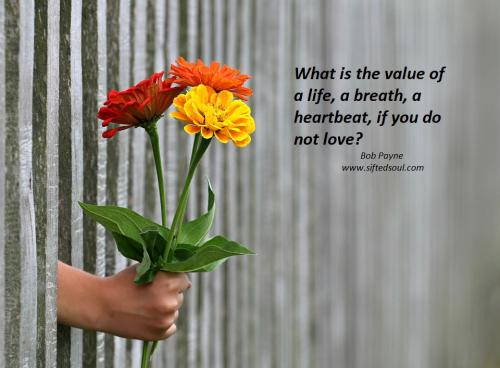 What is the value of a life, a breath, a heartbeat, if you do not love?