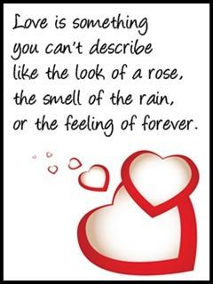 Love is something you can't describe like the look of a rose, the smell of the rain or the feeling of forever....