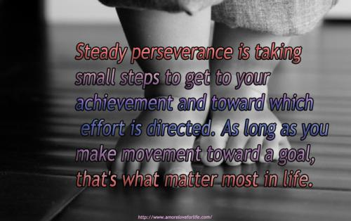 Steady perseverance is taking small steps to get to your achievement and toward which effort is directed. As long as you make movement toward a goal, that's what matter most in life.