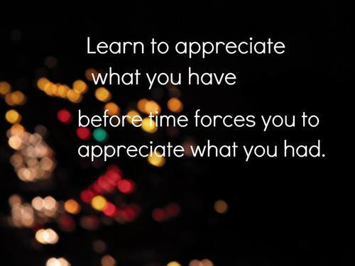 Learn To Appreciate Things Quotes: Arfeebrfee Appreciation Quotes