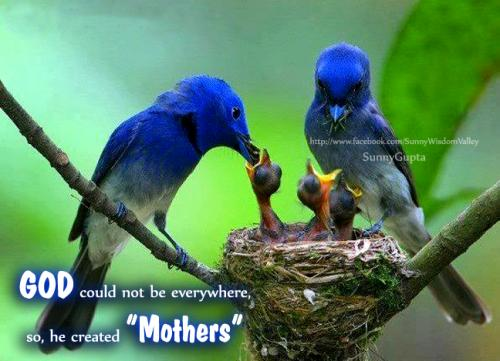 God Couldn't be everywhere, so he created mothers..