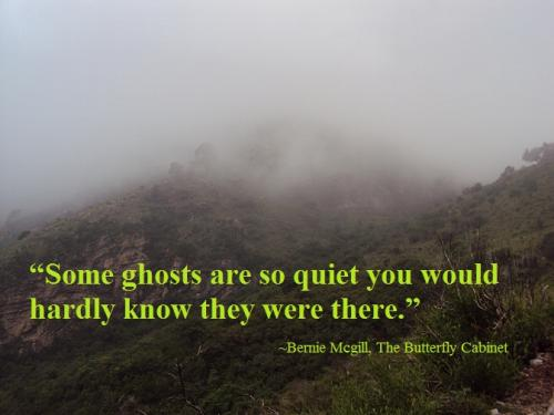 Some ghosts are so quiet you would hardly know they were there.