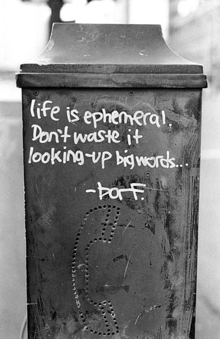 Life is ephemeral, Don't waste it looking up Big words.