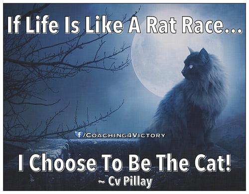 Life is like a race