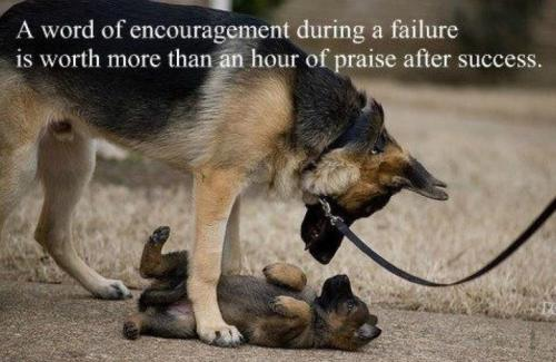 A word of encouragement during a failure is worth more than a hour of praise after success.
