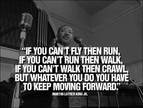 If you cant fly then run, if you cant run then walk, if you ant walk then crawl. But whatever you do, you have to keep moving forward.