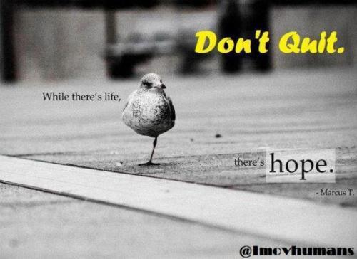 Aŋшąя sαіςНα (Burningeyes4u16) Hope Quotes