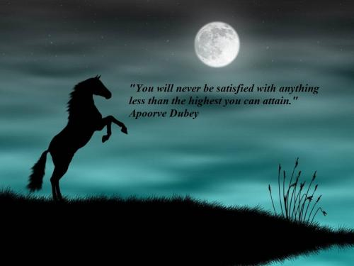 You will never be satisfied with anything less than the highest you can attain.