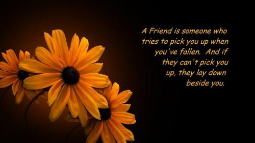 A friend is someone who tries to pick you up when youve fallen. And if they cant pick you up, they lay down beside you.