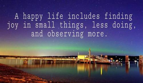 A happy life includes finding joy in small things, less doing, and observing more.