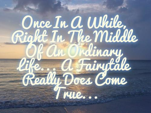 Once in a while, right in the middle of an ordinary life... A fairytale really does come true...