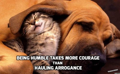 Being humble takes more courage than hauling arrogance.