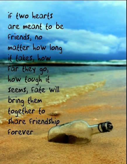 If two hearts are meant to be friends, no matter how long it takes, how far they go, how tough it seems, FATE will bring them back together to share friendship forever..