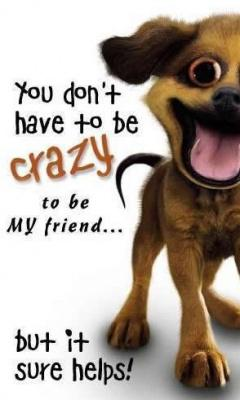 You don't have to be crazy to be my friend but it sure helps!