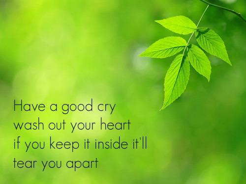 Have a good cry, wash out your heart, if you keep it inside it'll tear u apart.